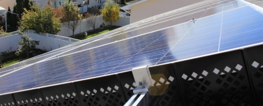 Keeping Pests and Debris away from your Solar Panels